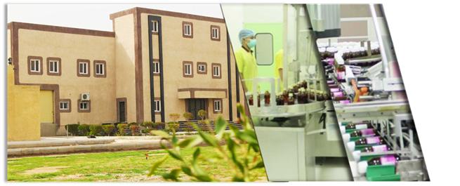 SPG structure – sahil pharma group